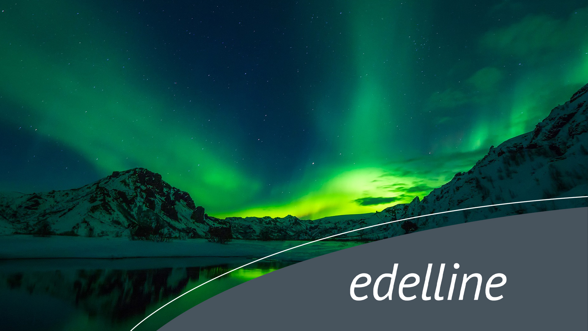 edelline AG - Online Marketing & Produktentwicklung