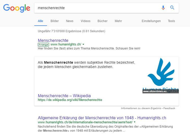 Screenshot Googlesuche Menschenrechte